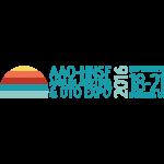 AAO-HNSF 2016