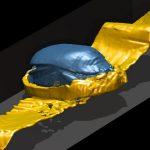 Der Körper des geflügelten Skarabäus besteht aus Stein (möglicherweise Lapislazuli), die Flügel aus Goldblech