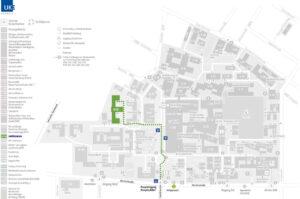 VOXEL-MAN auf dem UKE-Campus
